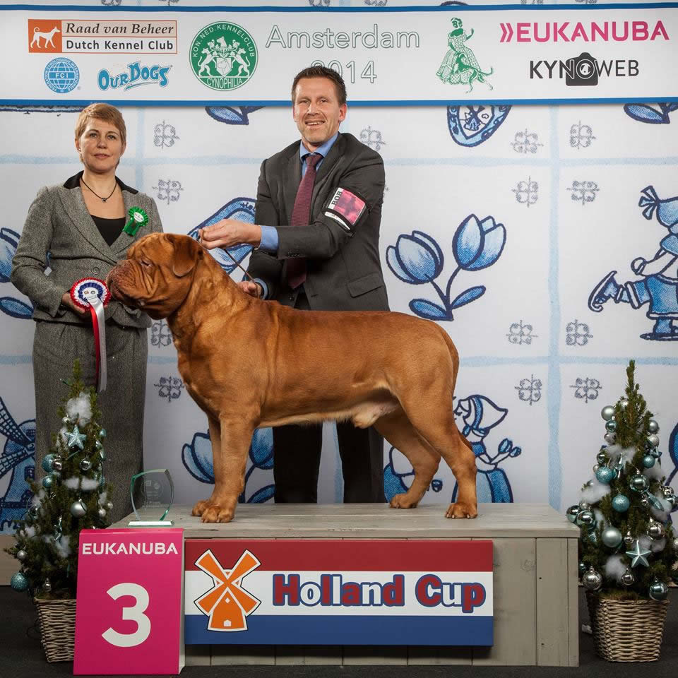 HOLLANDCUP2014
