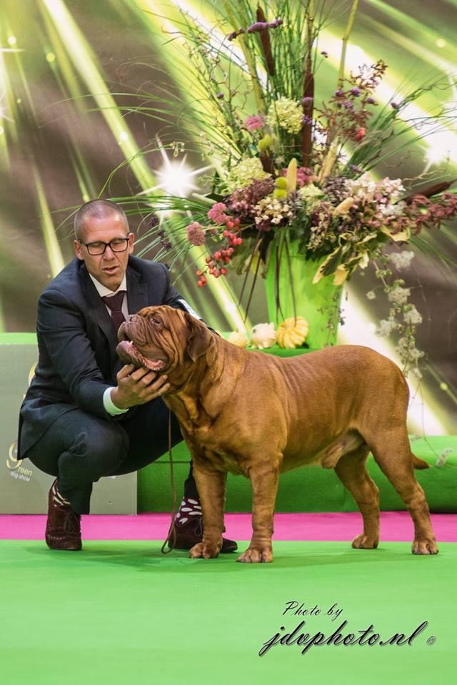 continentalwinnershow2015 belgium
