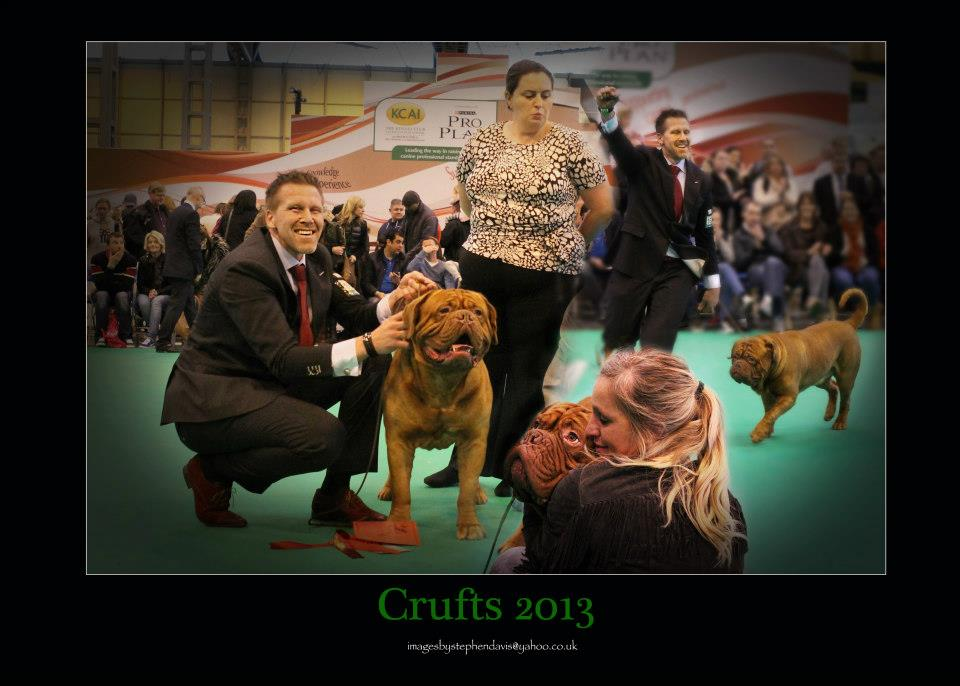 crufts2013lov